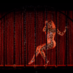 beyonce-partition-music-video-9